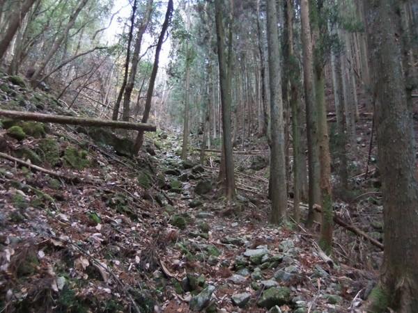 山道4.jpg